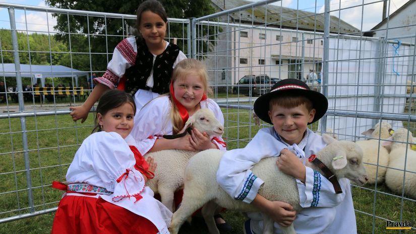 ovce, deti, bača