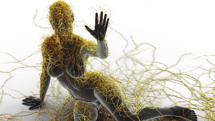 skleróza multiplex, nervová sústava