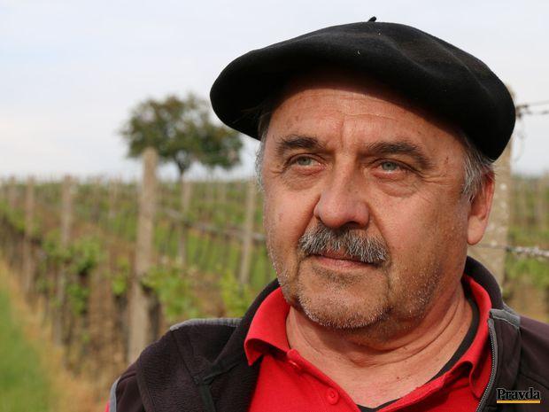 Obrázok Muž, ktorý učí reči vinohradu