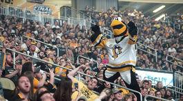 Pittsburgh, fanúšikovia