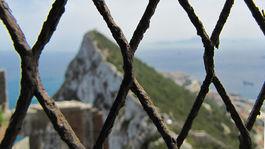 Gibraltár, opičí vrch, plot, pletivo, skala