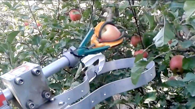 robotický zberač jabĺk