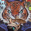 Čína, kresba, maľba, tiger, graffiti