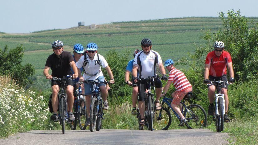 Tokaj, cyklotrasa, bicykle,