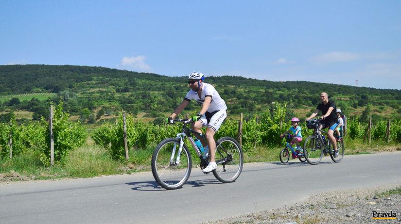 jurava popri vinohradoch, vinohrady, cyklista,...