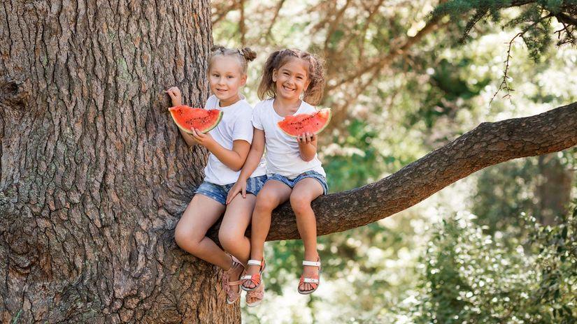 melón, deti, strom, prázdniny