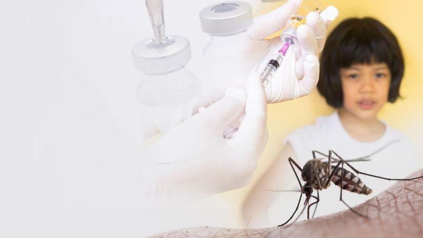 komár, horúčka dengue