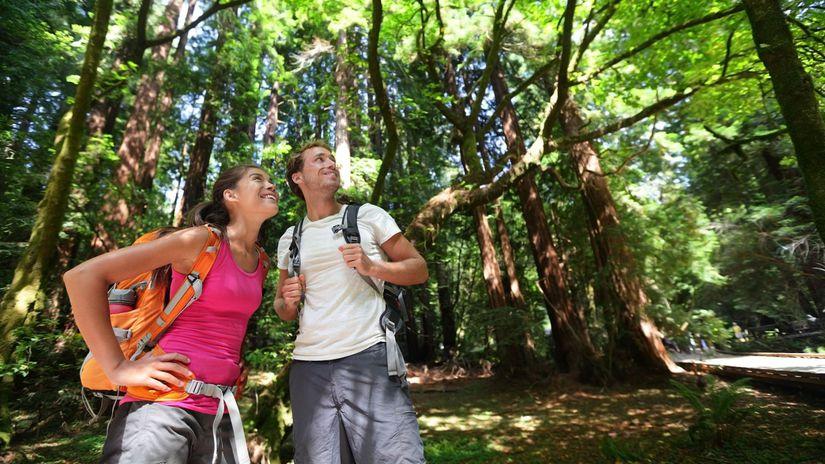 ludia, príroda, turistika, kliešte