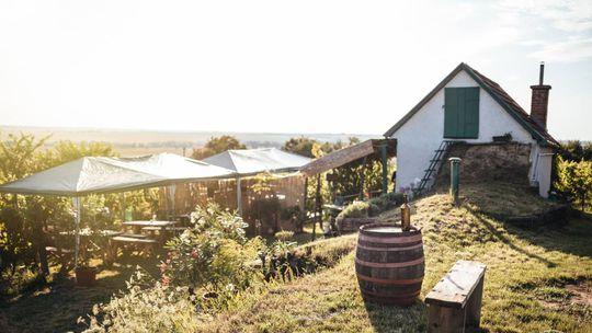 Vyberte sa na festival: Slobodná Strekovská vínna republika opäť otvorí svoje brány