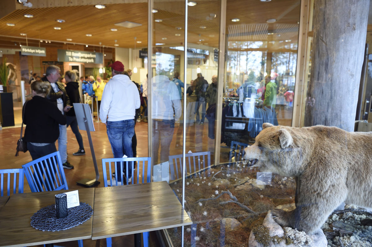 Návštevníci zoo ukameňovali v Bojniciach vzácne zviera - Domáce ... 785f79344cb