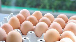 Hydinárom rastú náklady, plánuju zvyšovať ceny vajec i mäsa