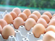 vajce, vajcia, vajicka, vajicko