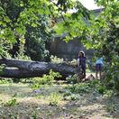 Veterná smršť: Takmer 400 zásahov hasičov, búrky sa môžu opakovať aj v piatok (GALÉRIE)