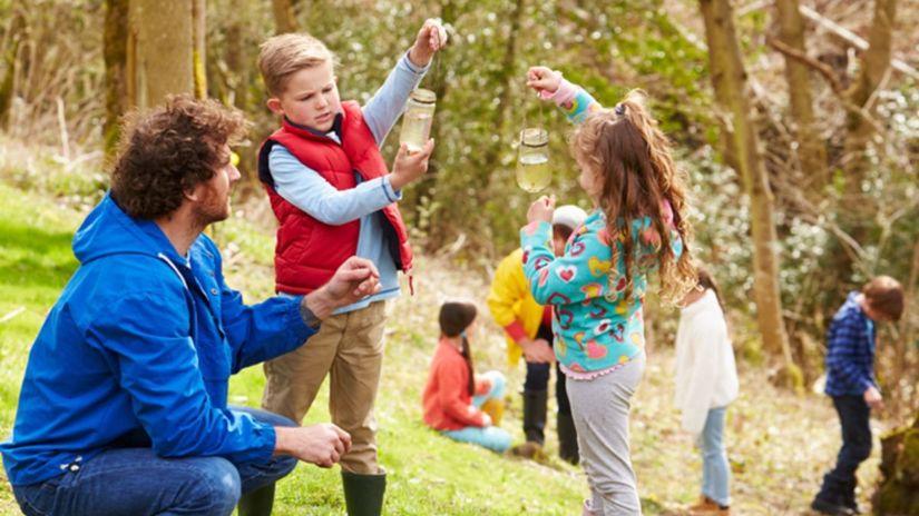 deti, škola, príroda, učenie