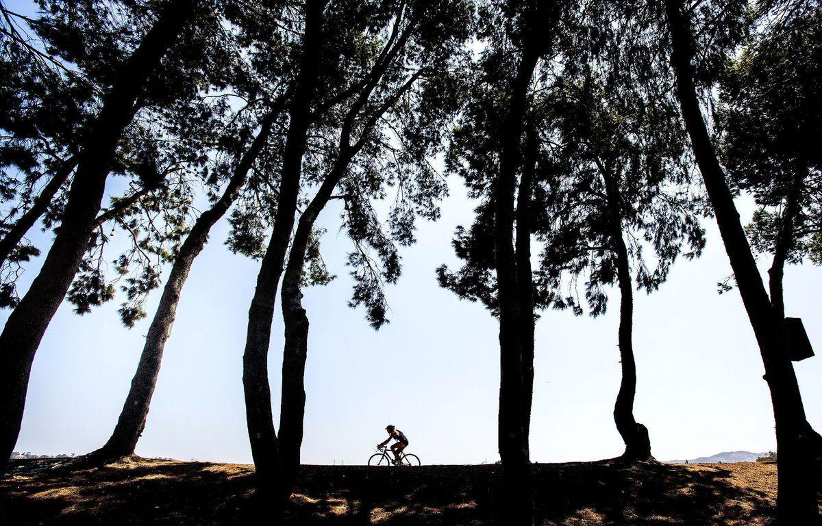 bicykel, cyklista, cyklistika, bicyklovanie, šport, stromy, park, prilba