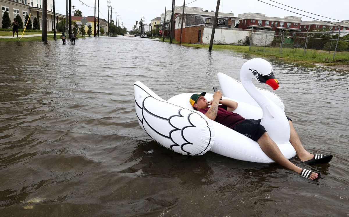 Harvey, hurikán, záplava, labuť, nafukovačka