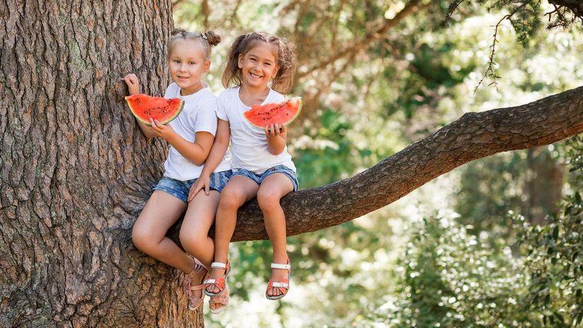 deti, strom, melón, ovocie, prázdniny,...