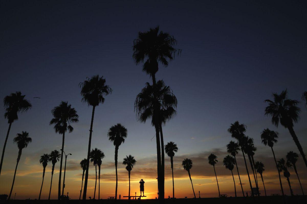 Kalifornia, palmy, leto