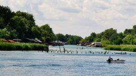 Dunaj, hausbóty, Jarovské rameno