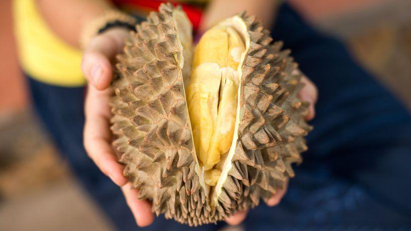 durian ovocie