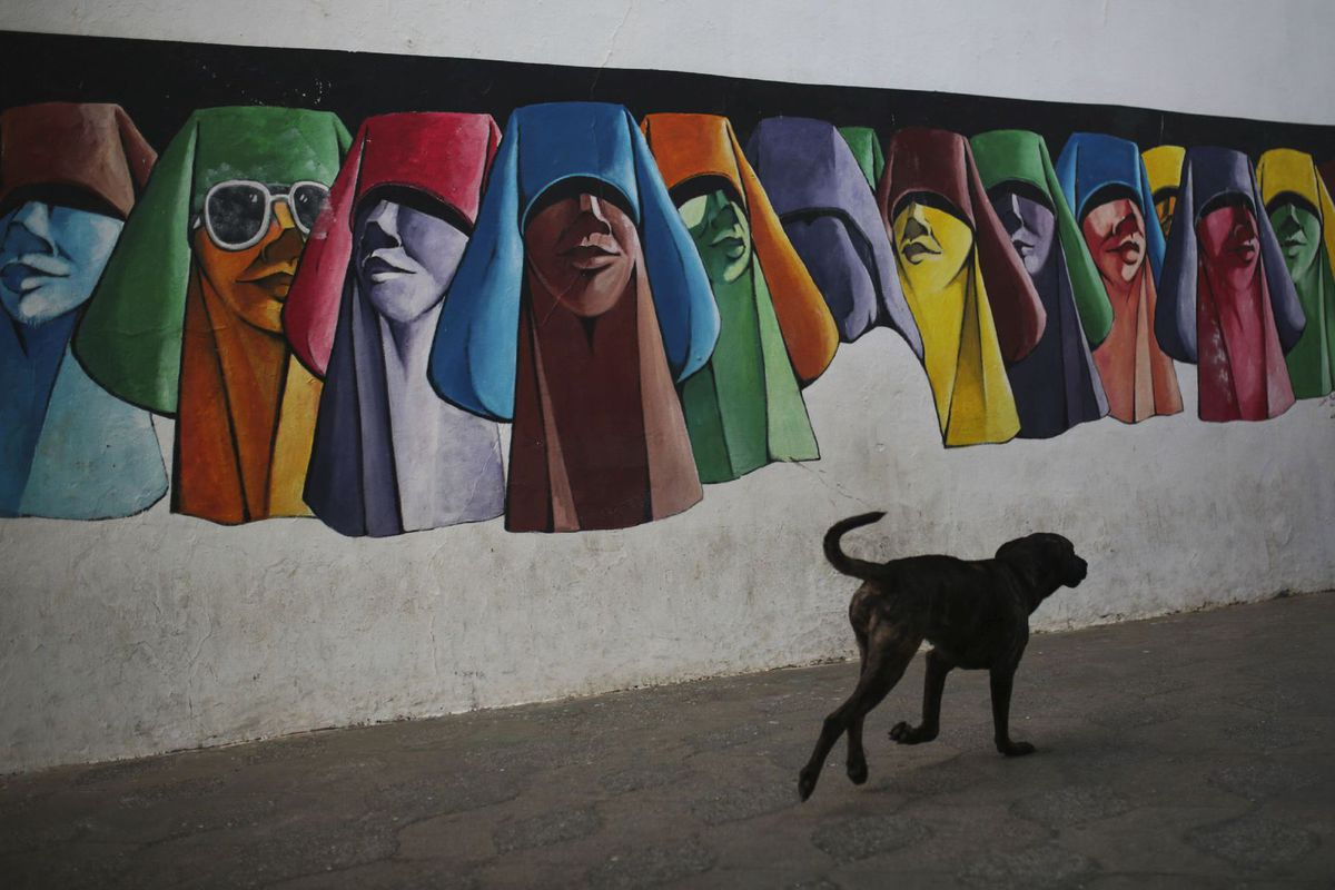 pes, maľby, Maroko, street art, graffiti