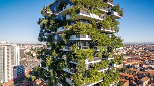 Dom + strom = vertikálny les. Z Milána sa šíri do sveta