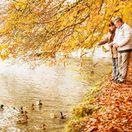 jeseň, dôchodca, penzia, senior, dôchodok