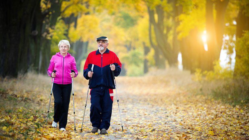 dôchodca, senior, staroba, relax, jeseň, les,...