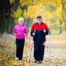 dôchodca, senior, staroba, relax, jeseň, les, prechádzka, walking