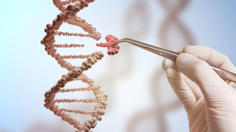 DNA, genetika