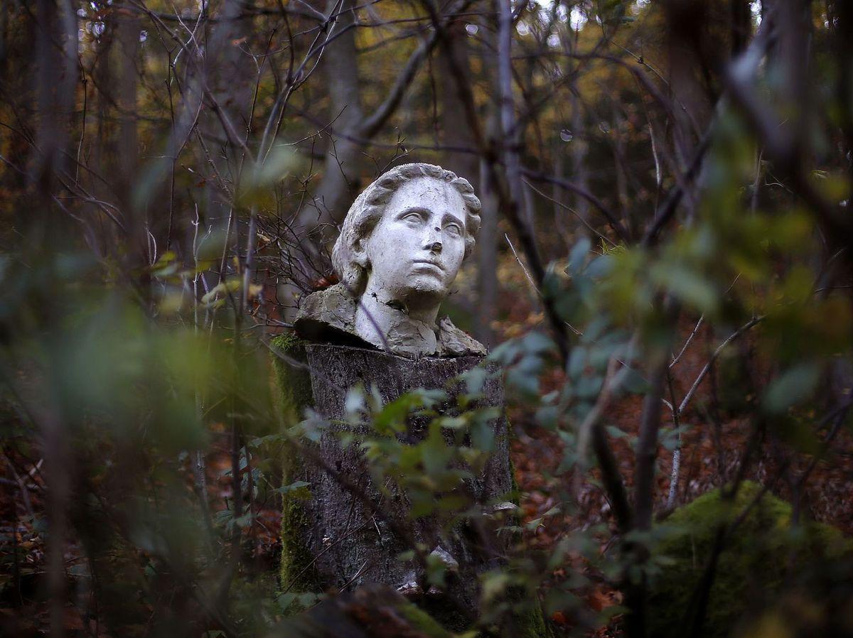 socha, busta, les, stromy