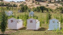 Vietnam cintorin  David Popovic 01
