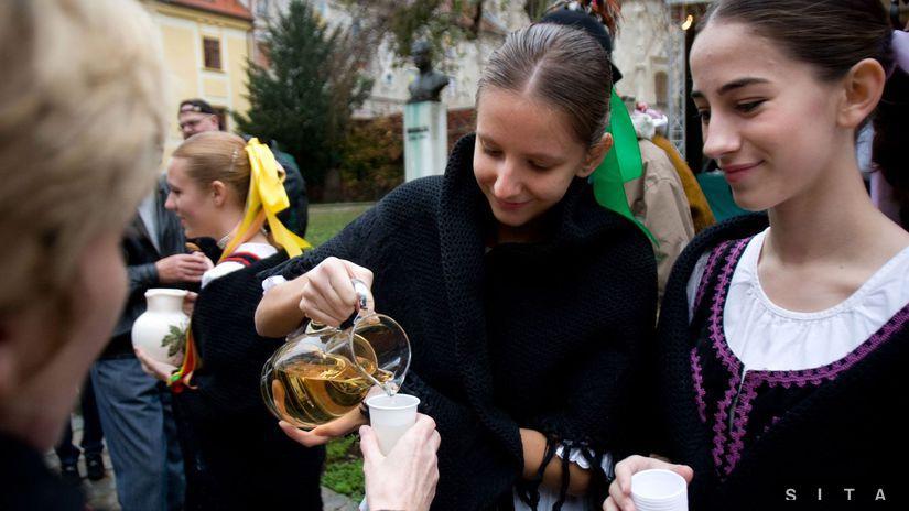 Svätomartinské dni, Bratislava, víno