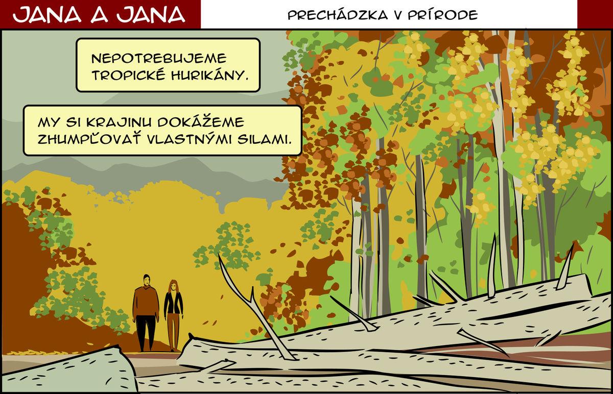 Karikatúra 13.11.2017