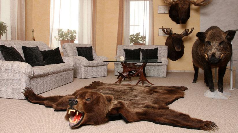 lov, medveď, kožušina