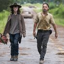 the walking dead, rick, carl,