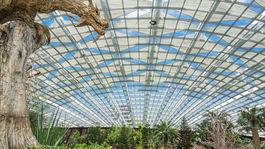 Singapur, botanická záhrada