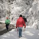 počasie, sneh