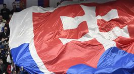 Slovenskí fanúšikovia, vlajka