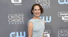 Herečka Laurie Metcalf si obliekla róbu Cristina Ottaviano.