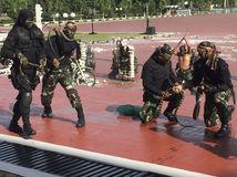 USA, Indonézia, vojaci, cvičenie s hadmi, tehly, rozbíjanie