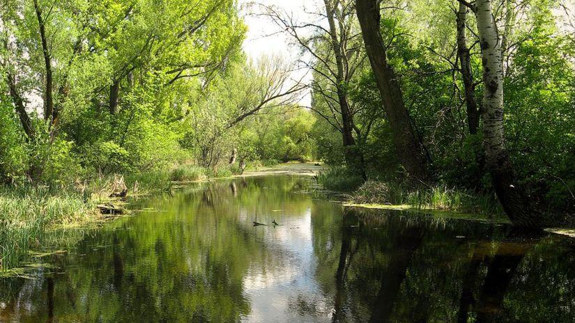 Čiližský potok