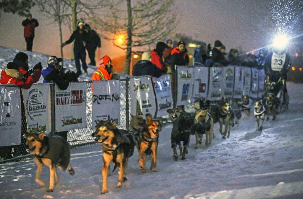 Yukon, psy, preteky, záprah