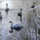 Mrazy udreli v plnej sile, budú pokračovať a môžu atakovať až mínus 30°C