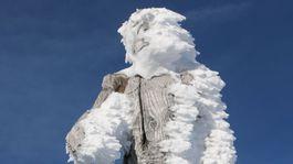 Yetti, Zugspitze, Alpy, sneh, zima, mráz