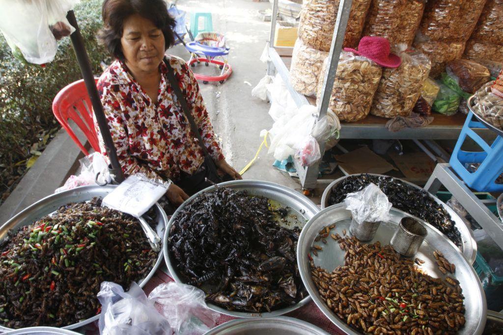 Kambodža, predavačka, chrobáky
