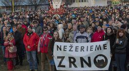 91399597a Bratislava, Košice, Žilina, Banská Bystrica, Prešov. Protestovalo sa ...