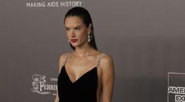 Brazílska modelka Alessandra Ambrosio pózovala na červenom koberci.
