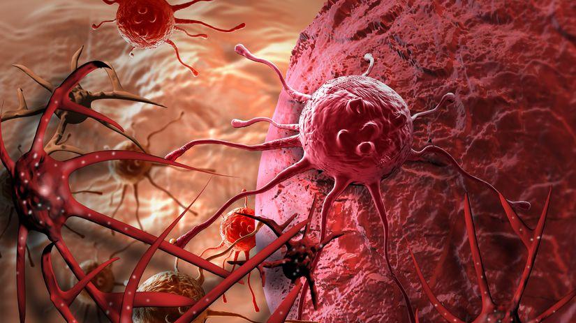 rakovina, bunky