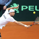 tenis, Davis cup, stvorhra, Igor Zelenay,